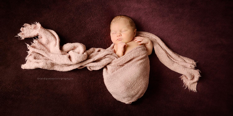 best newborn photographers NL, St. John's baby photographer, Brandi Gosse Photography